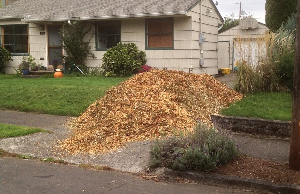 Wood chips in driveway